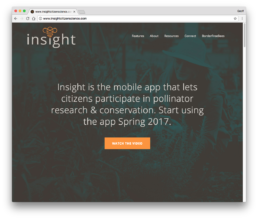 Insight App Website