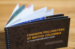 Pollinators of British Columbia: A Visual Guide